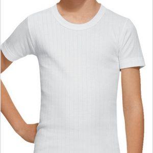 Camiseta Manga Corta Abanderado 202