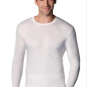 Camiseta Thermal M/Larga Abanderado 208
